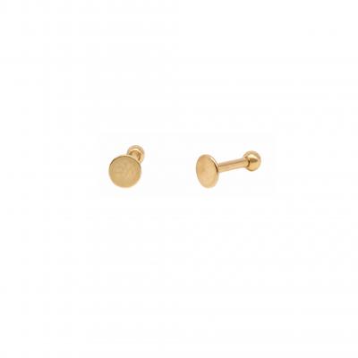 Piercing Disc Earring in Surgical Steel